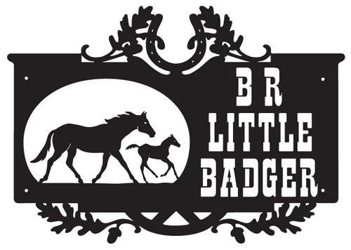 BR Little Badger